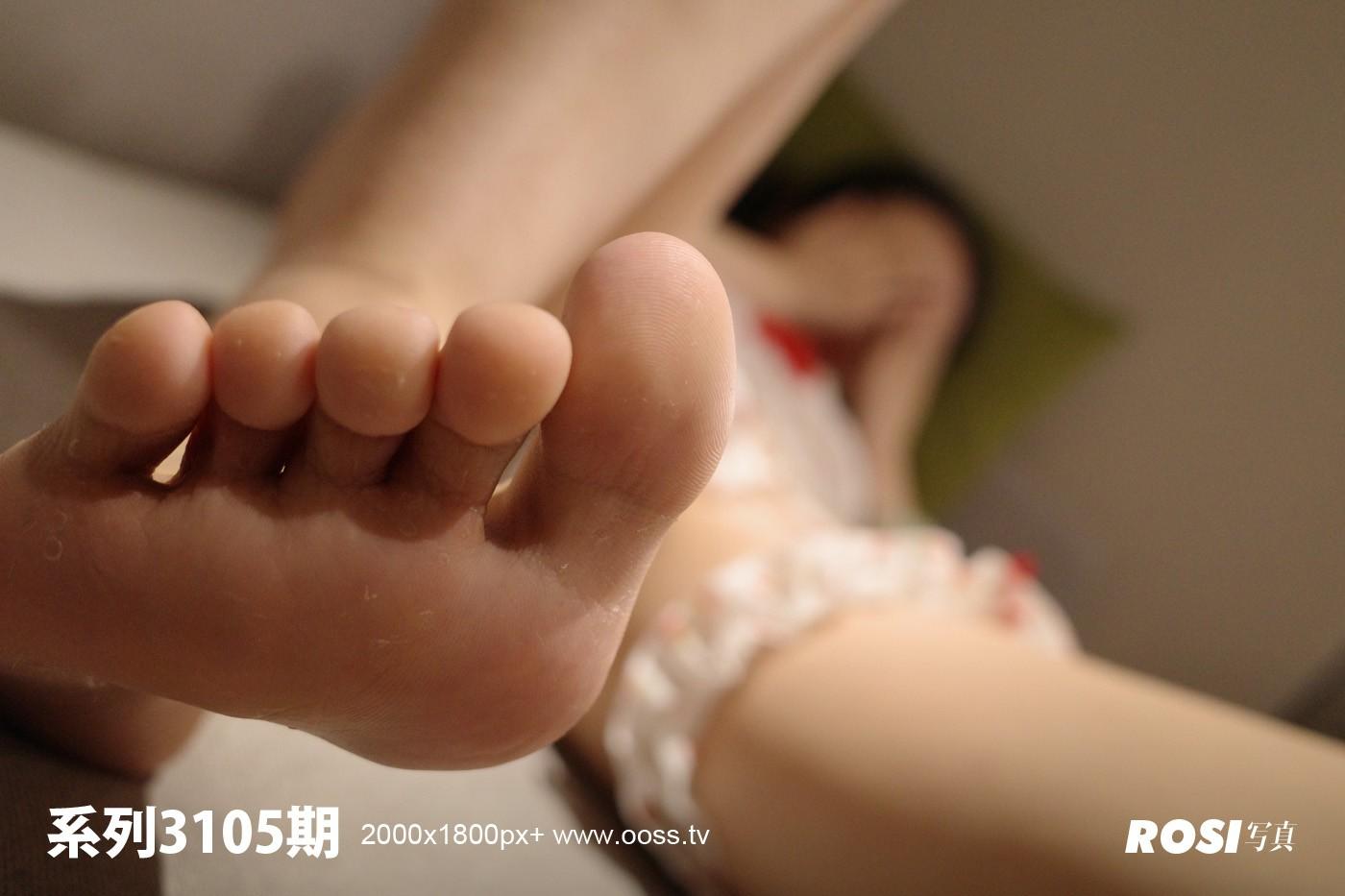 Rosi No.3105