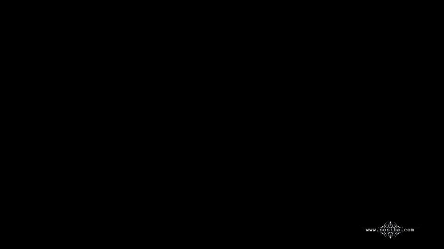 XiuRen VN.010